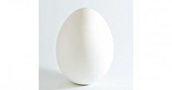10 آزمایش علمی جالب با تخم مرغ